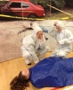 Forensic Science Workshop 2014